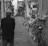 Gapienie puszek w małym Tokio obrazy stock