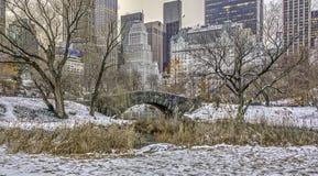 Gapstow bridżowy Centrali Park, Miasto Nowy Jork Obrazy Stock