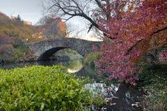 Free Gapstow Bridge - Central Park Stock Images - 19805214