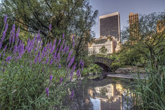 Gapstow bridge Central Park, New York City Stock Image