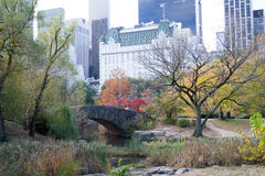 Gapstow bridge in a colorfull fall morning Stock Photography