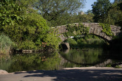 Gapstow bridge and plant over the lake opposite a shore , Central Park. Gapstow bridge and plant over the lake opposite a shore under the shade , Central Park Royalty Free Stock Images