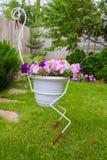 Garça-real com um potenciômetro do petunias Imagem de Stock Royalty Free