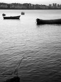 Garça-real, mar e cidade Imagens de Stock