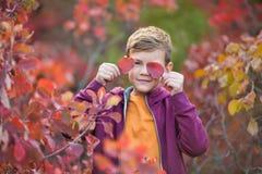 Garçon élégant beau mignon appréciant le parc coloré d'automne avec son chien anglais rouge et blanc de meilleur ami de taureau D Photographie stock libre de droits