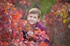 Garçon élégant beau mignon appréciant le parc coloré d'automne avec son chien anglais rouge et blanc de meilleur ami de taureau D Photos libres de droits