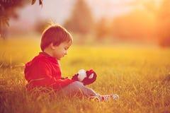 Garçon adorable avec son ami de nounours, s'asseyant sur une pelouse Image libre de droits
