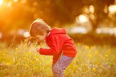 Garçon adorable avec son ami de nounours, s'asseyant sur une pelouse Photographie stock libre de droits