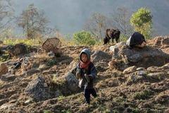 Garçon aux pieds nus de Nepali dans le jardin Région d'Everest, Himalaya, dedans Photo stock