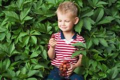Garçon avec des berrys Photographie stock