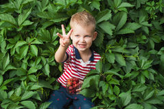 Garçon avec des berrys Photo stock