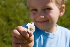 Garçon avec des fleurs image libre de droits