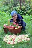 Garçon avec des pommes Photographie stock libre de droits