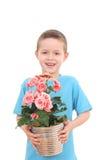 Garçon avec la fleur mise en pot image stock