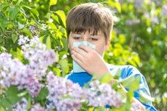 Garçon avec le lilas de floraison proche de rhinite allergique image libre de droits