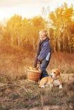 Garçon avec le plein panier des champignons avec le chien sur la clairière de forêt Photos libres de droits