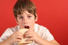 Garçon avec le vert de sandwich de Bologna photos libres de droits