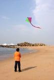 Garçon avec un cerf-volant Photographie stock libre de droits