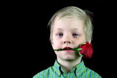 Garçon avec une rose rouge Le garçon tient une rose dans des ses dents Concept du jour de mère, Saint-Valentin photographie stock libre de droits