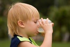 Garçon buvant sur le lait de nature Photos stock
