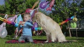 Garçon, chien et pastèque banque de vidéos