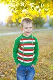 Garçon cinq ans dans un chandail lumineux dehors en automne images libres de droits