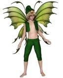 Garçon d'Elf de fée de Noël Photos stock