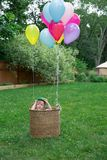Garçon d'enfant en bas âge Image libre de droits