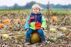 Garçon d'enfant en bas âge ayant l'amusement se reposant sur le potiron énorme de Halloween Photo libre de droits