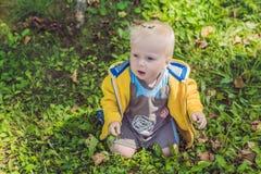 Garçon dans des pulls molletonnés jaunes en parc d'automne Image stock