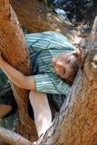 Garçon dans l'arbre. Photo stock