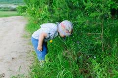 Garçon dans l'herbe photos libres de droits