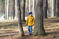 Garçon dans la forêt Images stock
