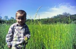 Garçon dans le domaine d'herbe Images libres de droits