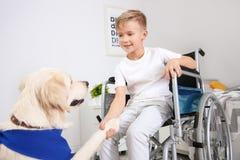Garçon dans le fauteuil roulant avec le chien de service Image stock