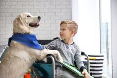 Garçon dans le fauteuil roulant avec le chien de service Photographie stock libre de droits