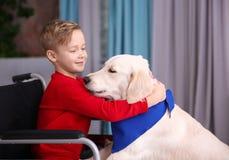 Garçon dans le fauteuil roulant avec le chien de service Photos stock