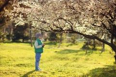 Garçon dans un jardin fleurissant Photo libre de droits