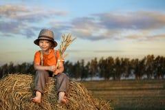 Garçon dans une meule de foin dans le domaine Photo libre de droits