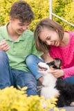 Garçon de l'adolescence et fille jouant avec le chiot Photo stock