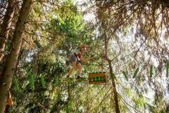 Garçon de l'adolescence sur un cours de cordes en parc d'aventure de cime d'arbre passant l'obstacle de cordage d'armement image libre de droits