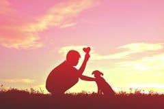 Garçon de silhouette jouant avec le petit chien Image stock