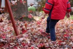 Garçon donnant un coup de pied les feuilles rouges en automne photo stock