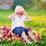 Garçon drôle d'enfant en bas âge s'asseyant sur le tas des pommes et mangeant l'APPL mûr Image stock