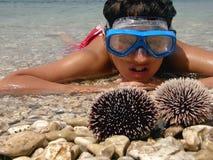 Garçon en mer avec des oursins Image stock