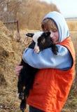 Garçon et agneau images stock