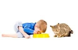 Garçon et chat communs de nourriture Photo stock