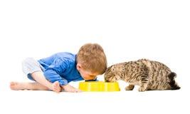 Garçon et chat mangeant de la même cuvette Images stock