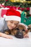 Garçon et chien dans la nuit de Noël Images stock