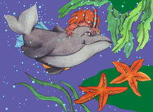Garçon et dauphin à jouer Photos stock